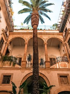 From the food to the weather, the people, the beaches, the architecture, the cost of living and safety - find out what living in Palermo is really like! Verona Italy, Puglia Italy, Venice Italy, Rome Travel, Italy Travel, Palermo Italy, Places In Italy, Sicilian Food, Lake Garda