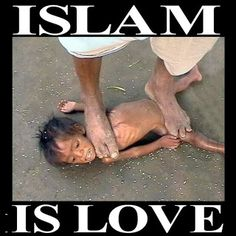 THE PATRIOT. : Islam Is Sick and Sadistic