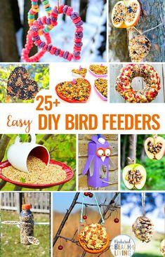 50 Best bird feeders for kids to make images in 2017 | Bird