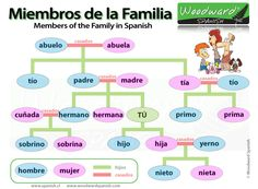A chart showing the different members of the family in Spanish with additional notes explaining each relationship and games to practice this vocabulary. Italian Vocabulary, Spanish Vocabulary, Teaching Spanish, Teaching English, English Fun, English Words, English Grammar, Learn English, English Tips