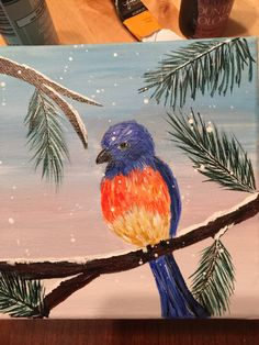 """Eastern bluebird 6x6"""" stretched canvas. $25 + s&h."""