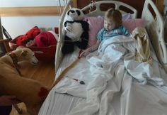 "Fantastic photos of our Greyhound ""Pet Friends"" at Children's Hospital from today's Pittsburgh Post-Gazette"