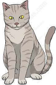 Related Image Cat Clipart Orange Cat Grey Cats