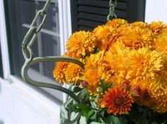 Ten Budget Friendly Decorating Ideas for Fall
