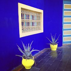 Instagram - from me to you's morocco trip - pinned by cevanza, art director of Plascon Spaces