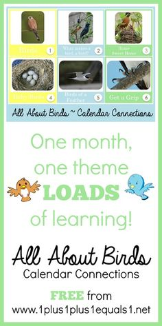 All About Birds Calendar Connections ~ free!
