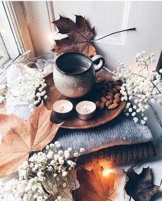 Autumn Fall Inspiration 🍂🎃🍁 Autumn Moodboard Find the best vacation Fall Inspiration, Deco Nature, Autumn Cozy, Autumn Fall, Autumn Ideas, Hello Autumn, Autumn Aesthetic, Cosy Aesthetic, Aesthetic Pastel