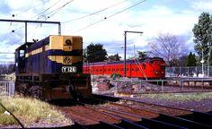 Graham station, Port Melbourne line 1981