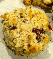 Paleo at Penn: Primal CocoNutty Cranberry Chocolate Chip Cookies