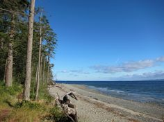 Plan for some Island Time this summer. Enjoy a relaxing holiday in beautiful, family-friendly Parksville and Qualicum Beach on Vancouver Island. Best Family Vacations, Family Travel, West Coast Canada, Relaxing Holidays, British Columbia, Columbia Travel, Visit Canada, Beach Kids, Vancouver Island