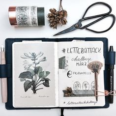 inside my hobonichi Who else is in this #letterattackchallenge ? I'm really bad at handwriting but @frauhoelle is so inspiring, I'm really motivated to practice! ~ On my goal list ✔️have a great Sunday!
