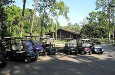 Golf cart rentals are a popular recreation offered Disney's Fort Wilderness Campground.  I recommend making a reservation well in advance.