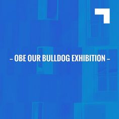 I have a feeling you'll like this one 😍 OBE Our Bulldog Exhibition https://www.collectibulldogs.com/obe-our-bulldog-collection/?utm_campaign=crowdfire&utm_content=crowdfire&utm_medium=social&utm_source=pinterest