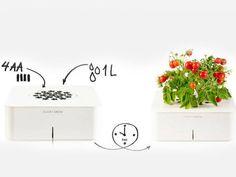 Vaso eletrônico cuida das plantas para você