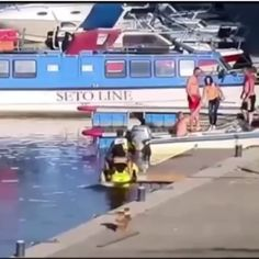 Taking the jet ski out for a wild ride Funny Films, Funny Memes, Hilarious, Jokes, No Seas Mamon, Funny Accidents, Wow Video, Weird Gif, Wtf Moments