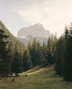 Sud Tirol, Northern Italy