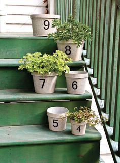 Totally could do in the front yard-Park Hill Collection Outdoor Landscaping, Landscaping Ideas, Backyard Ideas, Garden Ideas, Park Hill Collection, Porch Veranda, Address Numbers, Pot Sets, House Numbers