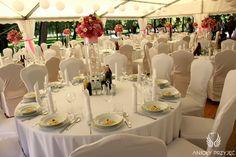 15.  Pink Wedding,Tent,Round tables,Centerpiece / Różowe wesele,Namiot,Dekoracje stołu,Anioły Przyjęć