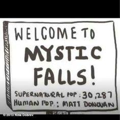 Vampire Diaries funnies