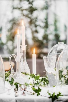 Vigilia in un giardino d'inverno New Years Eve Table Setting, Blog Vintage, Artificial Green Wall, Ivy Plants, Candle In The Wind, Virgin Gorda, White Gardens, Rustic Elegance, Elegant Homes