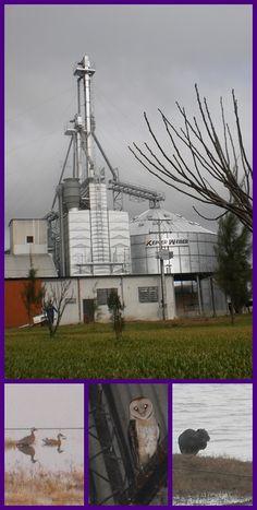Trabalho de eletrica em Uruguaiana, rio grande do sul