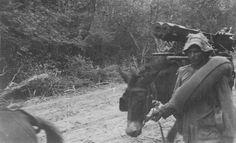 """""""213.- Hacia la línea de fuego."""" Álbumes de fotografias del Dr. De Sanctis, un medico argentino voluntario en la Guerra del Chaco. 1932. Cortesía:  Fundacion HISTARMAR, Buenos Aires (Argentina)"""