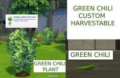 Mod The Sims - Custom Harvestable Green Chili