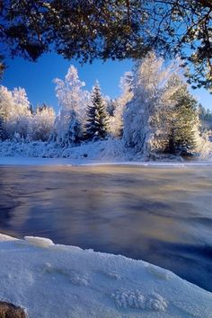 A Winter Wonderland iPhone Wallpaper | iDesign * iPhone