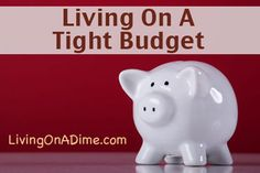 Mom raised 2 teens on $500 a month, we understand when you say you have a tight #budget! Here are some ideas about how to make living on a tight #budget easier. Click here to get budget tips you can start using NOW! http://www.livingonadime.com/debt-free-