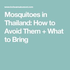 Mosquitoes in Thailand: How to Avoid Them + What to Bring