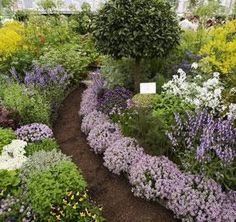 Wonderful I Want A Beautiful Herb Garden!
