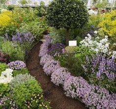 i want a beautiful herb garden