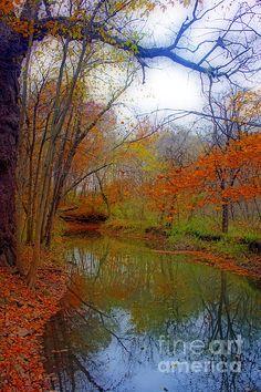 """Autumn Along Pikes River"", by Kay Novy  http://fineartamerica.com/featured/autumn-along-pikes-river-kay-novy.html   #Hawthorn #Hollow #Wisconsin #nature #sanctuary #autumn #fall #photography #KayNovy #kkphoto1"