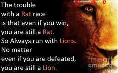 perSPecTIVE: will you stay in the rat race or are you going to run with the lions. ©Tsahizn Tseh
