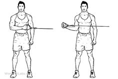 Shoulder Flexion Range of Motion Wand Exercise. Stand
