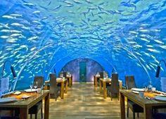 Ithaa Undersea Restaurant - ランガリ島, モルディブ