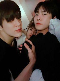 The best trio I've ever seen lucas wayv nct taeyong doyoung renjun jeno jaemin Jaehyun Nct, Winwin, Jeno Nct, Nct 127, Kpop, Nct Group, Nct Dream Jaemin, K Wallpaper, Nct Doyoung