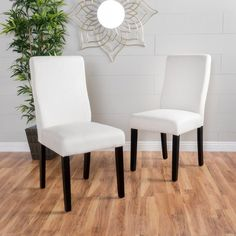 Best Selling Home Porzingis Upholstered Dining Chair - Set of 2 - 299505