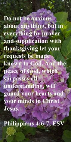 Do not be anxious about anything, but in everything by prayer and supplication with thanksgiving let your requests be made known to God. And the peace of God, which surpasses all understanding, will guard your hearts and your minds in Christ Jesus. Philippians 4:6-7, ESV Precious Jesus, Come Unto Me, Christian Friends, Peace Of God, Guard Your Heart, Circumcision, Christian Devotions, Son Of God
