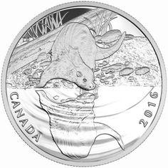 10 Dollar Silber Otter PP