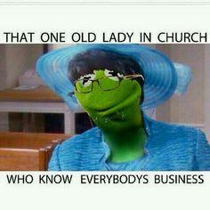 Sister Kermita E. Frog