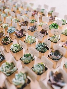 Marvelous 20 Ideas of Mini Wood Succulent Planter https://decoratio.co/2018/01/12/w/ Succulent is a type of plants that doesn't need a lot of treatment. They can grow anywhere with minimum water, including the wood succulent planter. Here are 20 ideas of cute and vintage succulent planter.