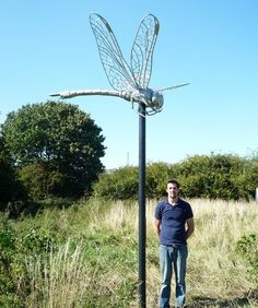 Commission a Dragonfly - with price and size guide. By Thrussells - Artist Metalsmiths based in Cornwall, UK.