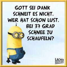 2302 Besten Lustige Sprüche Und Minions Bilder Auf Pinterest Funny