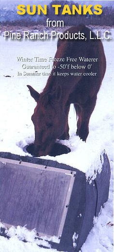 Suntanks: Freeze-proof Solar Heated Horse Waterers,Cow Water Tanks Horse Stables, Horse Barns, Livestock Water Tanks, Horse Water Trough, Barn Layout, Winter Horse, Barrel Racing Horses, Future Farms, Hobby Farms