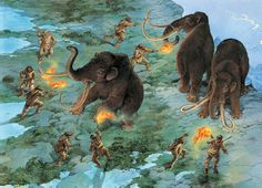 Using flaming torches and spear these hunters have managed to coax some woolly mammoths to the edge of a high cliff. Eventually, one will stumble and fall to its death.