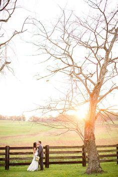 oakridge-estate-wedding-oak-ridge_390