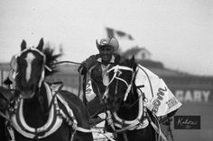 Approximately photos (mostly B&W) available from pro rodeos Also a few thousand photos of flora, fauna and scenics available. Contact me for details (email or All photos copyright Fred Kobsted. Pro Rodeo, Cowboy Up, Calgary, Racing, Slim, Art, Running, Art Background, Auto Racing