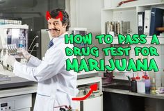 It's actually impossible to detox yourself for a drug test. This doesn't mean that THC screenings can't be fooled...