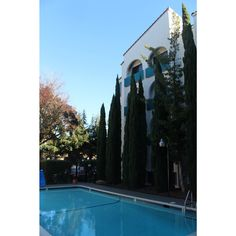 Who said anything about winter? Our heated pool and sunny days mean you get time to lounge. Executive Toys, Outdoor Pool, Outdoor Decor, Stanford University, Heated Pool, Mountain View, Business Travel, Bay Area, Hotel Offers